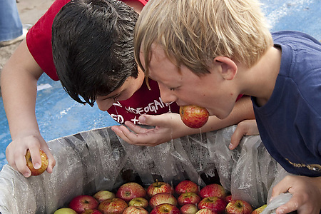 apple-bobbing